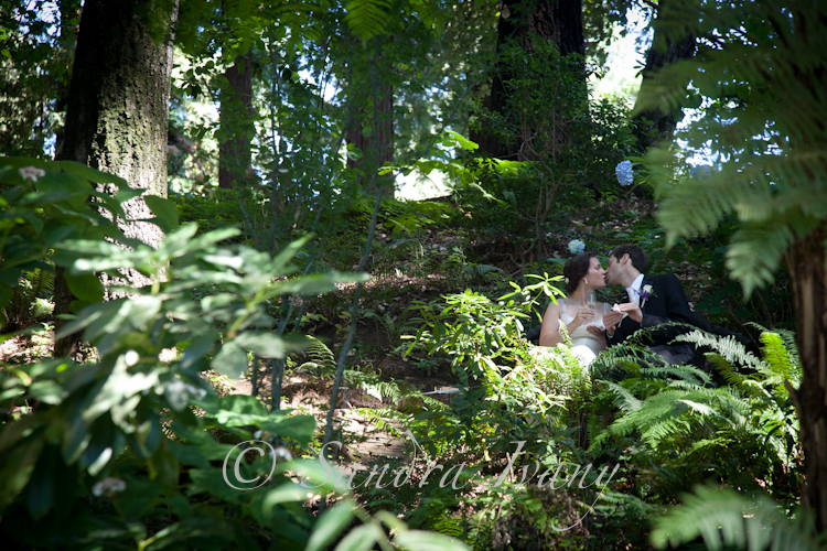 Nestledown Wedding Photographer, Los Gatos
